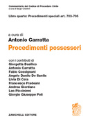 art. 703-705 Procedimenti possessori